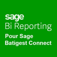 Sage Bi Reporting 100cloud - Assistance et Télémaintenance